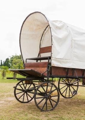 budget wagon